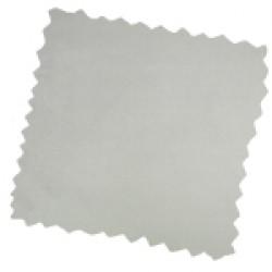 Cambio Silver (CAM2039)